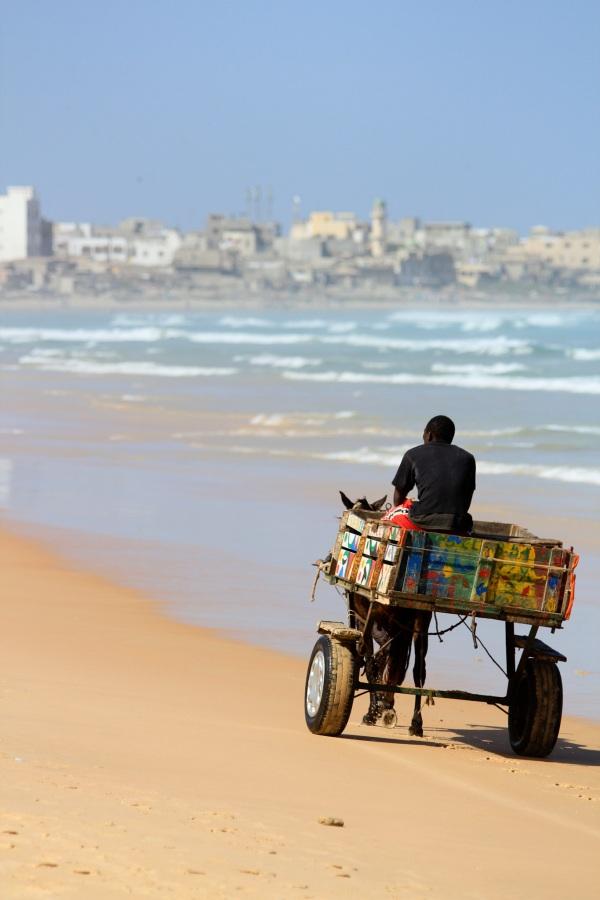 Une charrette sur la plage de Yoff, Dakar