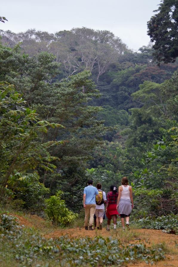 Campement Kongou 9